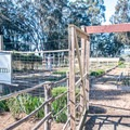 Garden that provides fresh vegetables for the restaurant.- Costanoa KOA