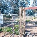 Garden that provides fresh vegetables for the restaurant.- Costanoa KOA