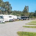 Wide, well-paved interior roads for the RV section.- Costanoa KOA
