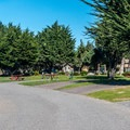 Large, well-landscaped sites.- Costanoa KOA