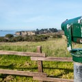 The view from the visitor center.- Año Nuevo State Park