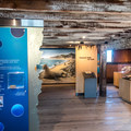 Many exhibits on elephant seals and other marine life.- Año Nuevo State Park