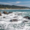 Año Nuevo offers marvelous hiking along the coastal bluffs.- Año Nuevo State Park