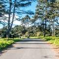 The park road is wide and smooth.- Sunset State Beach Campground