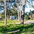 Sunset campground is in a lovely setting.- Sunset State Beach Campground