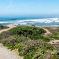 A path down to the beach.- Pescadero State Beach
