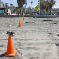 Designated areas for surfing and swimming.- La Jolla Shores