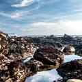 Tidepools along the shore.- Estero Bluffs State Park