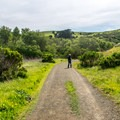 The trail is a straight shot to the shore.- Harmony Headlands State Park