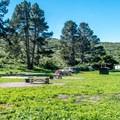 A beautiful setting.- Islay Creek Campground