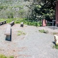 Campground amphitheater.- Islay Creek Campground