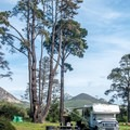 Morro Bay State Park Campground.- Morro Bay State Park Campground