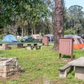 The campground is popular with tent campers.- Morro Bay State Park Campground