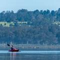 Morro Bay.- Morro Bay State Reserve