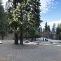 Apple Tree Campground.- Apple Tree Campground