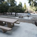 Typical campsite at Apple Tree Campground.- Apple Tree Campground