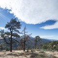 View west of the San Gabriel Mountains from Table Mountain Campground.- Table Mountain Campground