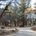 Mountain Oak Campground.- Mountain Oak Campground