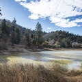 Jackson Lake.- Jackson Lake Day Use Area