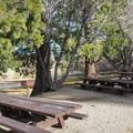 Day use picnic area at Jackson Lake.- Jackson Lake Day Use Area