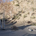 Typical campsite at Sycamore Flat Campground.- Sycamore Flat Campground