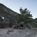Typical campsite at South Fork Campground.- South Fork Campground, Big Rock Creek