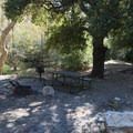 Typical campsite at Coldbrook Campground.- Coldbrook Campground