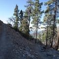 Windy Gap Trail.- Windy Gap Trail Hike
