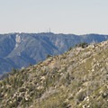 View southwest of Mount Wilson (5,710 ft.) from the Windy Gap Trail.- Windy Gap Trail Hike