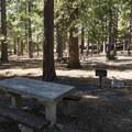 Day use picnic area at Crystal Lake Recreation Area Campground.- Crystal Lake Recreation Area Campground