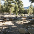 Typical site at Deer Flat Group Campground.- Crystal Lake Recreation Area