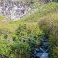 The trail continues up rocky terrain into the ravine.- Mount Washington via Tuckerman Ravine Trail