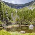 Soon the trees give way to mountain vistas.- Mount Washington via Tuckerman Ravine Trail