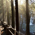 Heavy mist is not uncommon on the falls trail.- McArthur-Burney Falls Memorial State Park