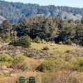 A place to relax and explore.- Costanoa Lodge