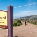 The trailhead is across Highway 1 from the Pescadero State Beach south parking area.- Pescadero Marsh Natural Preserve
