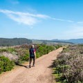 Entering the preserve.- Pescadero Marsh Natural Preserve