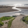 The trail down to the beach offers a great view of the creek.- San Gregorio State Beach
