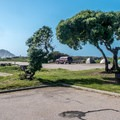 Typical center-median site at Morro Strand.- Morro Strand Campground