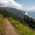 Headed back down the trail.- Kirk Creek / Vicente Flat Trail