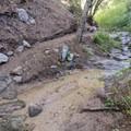 Millard Falls Trail.- Millard Falls Hike