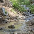 The trail crisscrosses over Millard Canyon Creek.- Millard Falls Hike