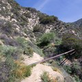 The Rubio Canyon Trail crosses aquaduct pipes.- Rubio Canyon