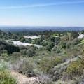 View over Rubio Wash Debris Basin.- Rubio Canyon