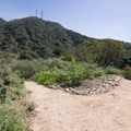 Turn left at the intersection by the native plant garden.- Rubio Canyon