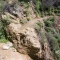Rubio Canyon Trail.- Rubio Canyon