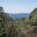 View toward Los Angeles.- Rubio Canyon