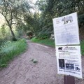 Bear presence may occasionally close the campground.- Millard Campground