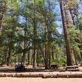 Picnic tables next to the day use parking area.- McArthur-Burney Falls Memorial State Park