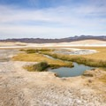 The nearer of two wide pools is cooler and further from the source.- Tecopa Mud Baths